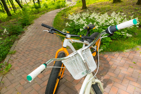 Top view of pair of bikes facing each other on brick laid sidewalk between low growing flowers in park in the shade