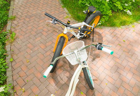 Top view of womens and mens bicycles facing each other on brick laid sidewalk between low growing flowers in park