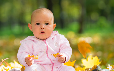 Surprised little baby girl staring at camera as she sits on the grass playing with yellow autumn leaves in a park 免版税图像