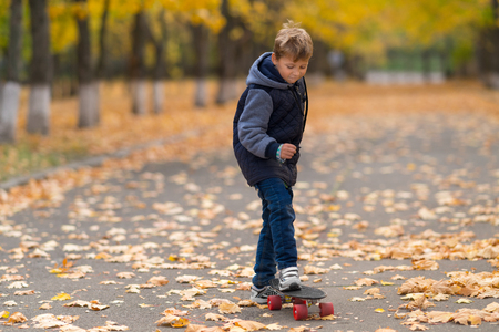 Boy in jacket standing on skateboard with one foot, going to move forward. Full length front portrait in the park covered with yellow leaves. Archivio Fotografico