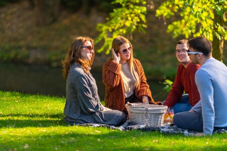 Two young women enjoying a picnic with their boyfriends sitting on a rug on the grass in a park around a food hamper