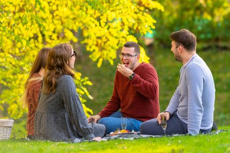 Group of friends celebrating at a picnic in a park during autumn sitting on a rug on the lush green grass drinking champagne and eating