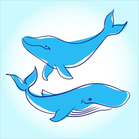 sea animals: Vector illustration of sea animals Illustration