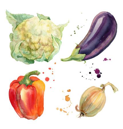 水彩蔬菜与花椰菜,茄子,胡椒和洋葱