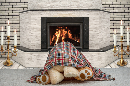 valentine s day teddy bear: Two Teddy bear hugging under a blanket. A romantic evening by the fireplace.love under the blanket ?