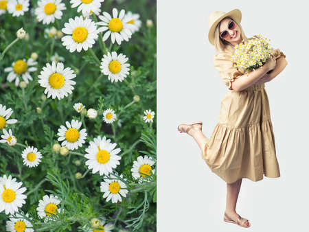 Beautiful woman in hat and with a basket of field daisies .Collage. Field camomiles.