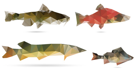 Polygon abstract illustration of American catfish, perch, pike and red salmon Vector