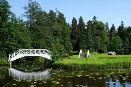 The white bridge on a background of a green grass and trees