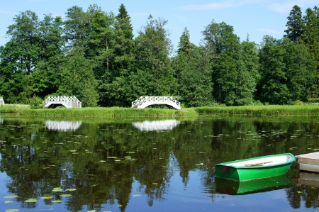 The white bridge on a background of a pond and trees