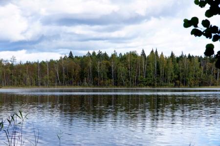 See und B�ume auf einem Hintergrund von den blauen Himmel Lizenzfreie Bilder