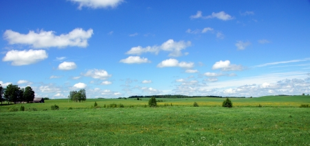 Meadow on a background of the sky and clouds
