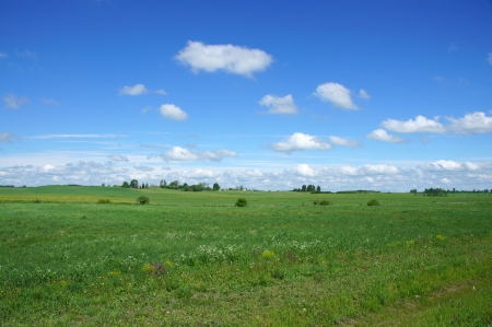 Perfect green field, blue sky with white clouds