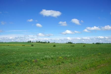 Perfekte gr�nen Wiese, blauer Himmel mit wei�en Wolken Lizenzfreie Bilder