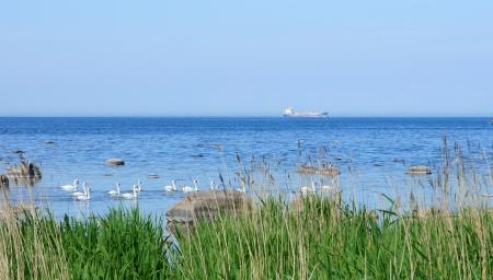 Seacoast on a background of the blue sky