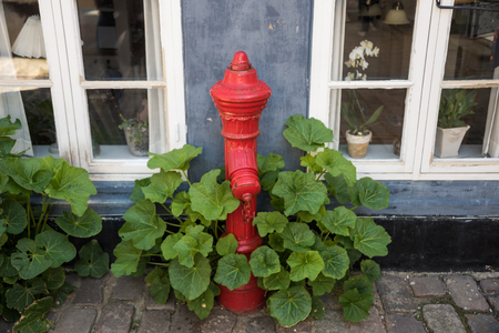 Fire hydrant outside a house on a cobblestone street.