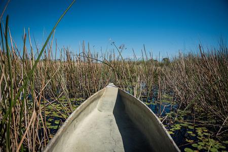 Traditional Makoro canoes on the Okavango Delta Botswana