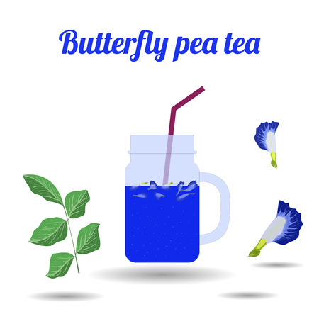 Butterfly pea tea in glass jars on white background. Concept for cocktail menu bar. Vector illustration in flat design. Illustration