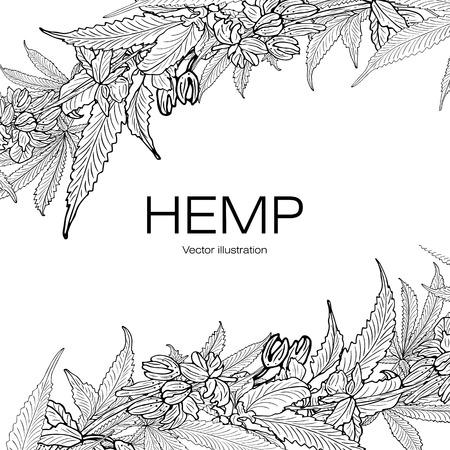 Carte, modèle, bannière dessin à la main de feuilles de branches de cannabis de chanvre. Graphiques en noir et blanc, illustration vectorielle.