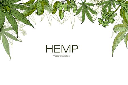 卡片,模板,旗帜手画大麻大麻的叶子的树枝。绿色图形,矢量插图。