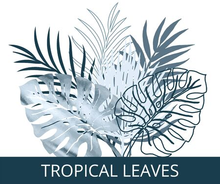 Vector color set blue watercolor and silhouette palm exotics and monstera leaves. Vector modern illustration on white.