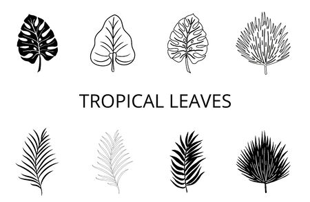 Set of palm leaves silhouettes isolated on white background. Vector illustration. Vettoriali