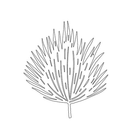 Tropical leaf silhouettes isolated on white background. Black outline vector illustration.