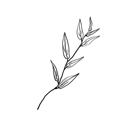 Simple not perfect black branch silhouette with leaves. Icon illustration isolated on white. Hand drawing vector asia sign, symbol. Wabi sabi japanese style.