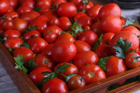 Many fresh shiny red tomatoes in tray closeup Stock Photo