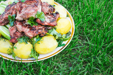 Barbecued meat with boiled potatoes and vegetables on the grass. gorizontal Stock Photo