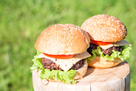 Beef burger with cheese and vegetables with garnish on grass Stock Photo