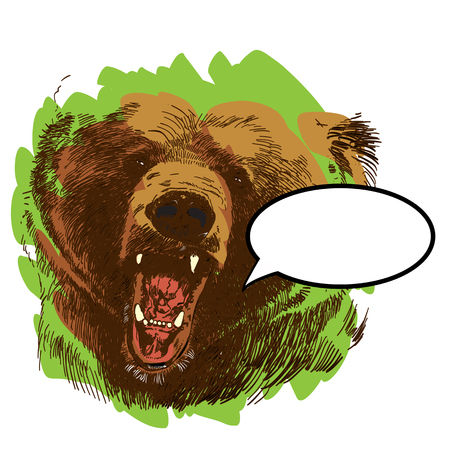 Roaring bear, bear head, wild bear, brown bear head. Illustration