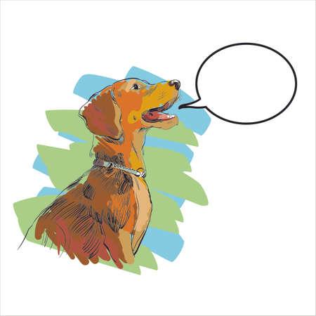Vector dog silhouette, irish setter, faithful dog.