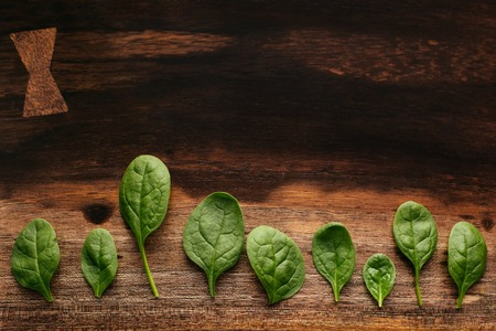 Green leaves of fresh spinach on green wooden textured board, lined up, shot from above. Stock Photo