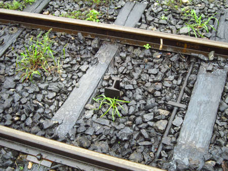 input: Rail input Rail