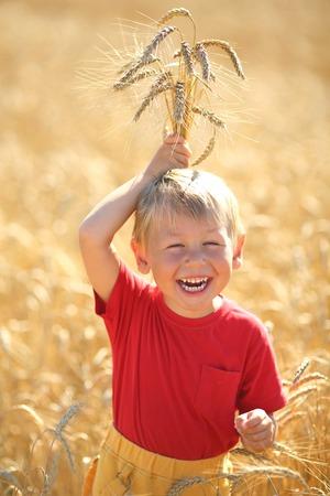 little boy in the wheat field photo