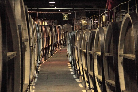 antique factory: wine production - huge old wine barrels in the cellar