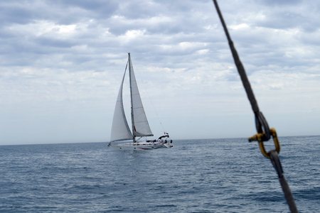 regatta: Regatta sport yachts on the high seas