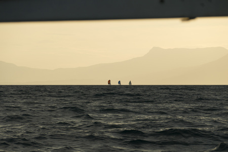 sailing yacht regatta at sunset along the mountain coast