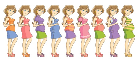 Pregnant woman in different clothes  Nine month set  Isolated vector illustration Vettoriali