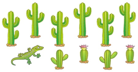 Cactus and lizard. Desert theme.  illustration.