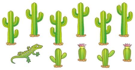 plantas del desierto: Cactus y lagarto. Desierto tema. ilustración. Vectores