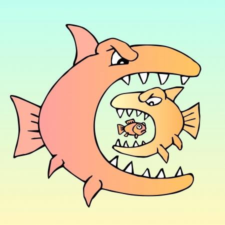 육식 동물은 육식 동물을 먹는다. 배고픈 악마 물고기.