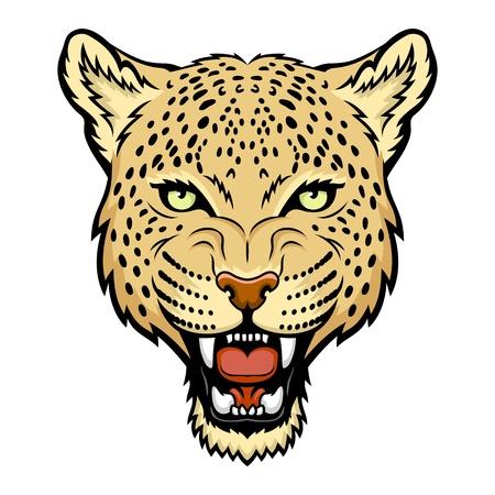 A Leopard head illustration  Illustration