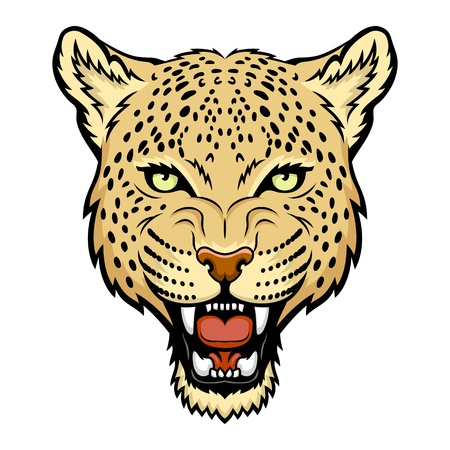 A Leopard head illustration  Vettoriali