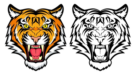 A Tiger head  Stock Vector - 19363759