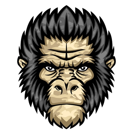 Ape head Stock Vector - 21925989