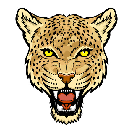 A Leopard head  Illustration