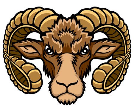 aries: Una ilustración cabeza Aries. Se trata de ilustración vectorial ideal para una mascota y tatuaje o una camiseta gráfica. Vectores