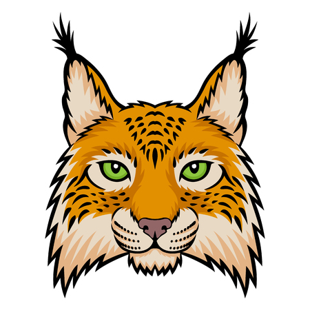 lynx: A lynx head. This is vector illustration ideal for a mascot and tattoo or T-shirt graphic.