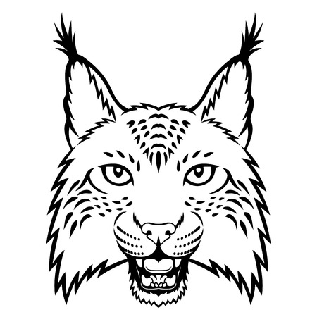 lynx: A lynx head logo. This is vector illustration ideal for a mascot and tattoo or T-shirt graphic.